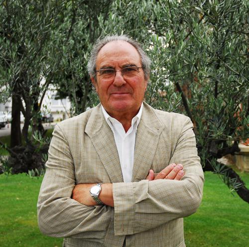 José Javier Viñes Rueda